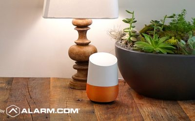 Use Google Home to Secure Your Home